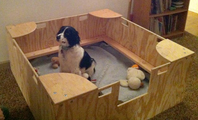 Whelping Box Construction Plans
